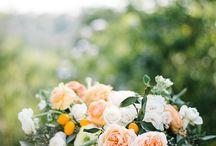 Citrus weddings
