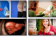 The fatty liver bible & ezra protocol review