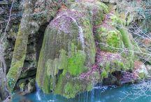 Cascada Bigăr / Cascada Bigăr este una dintre cele mai frumoase locuri din ţara noastră! Cei de la The World Geography au fost atât de impresionaţi de micuţa cascadă românească, încât au plasat-o în fruntea topului cascadelor unice în lume!