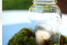 Moss / Beautiful mossy crafts and DIY garden inspiration.