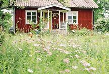 Dreaming of Sweden