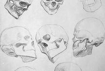 Portrait - Skull