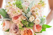 Early spring wedding in pink and white