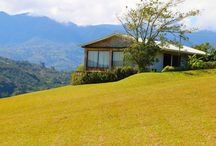 Orosi 40 Acre Private Property with Stunning Views of Cache Lake