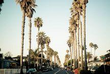 LA / by Jessica Council