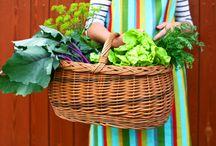 Homesteading ~ Garden / Gardening tips