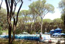 Biglietto da visita Le Marze Boschetto Holiday / Biglietto da visita Le Marze Boschetto Holiday, Villaggio, campeggio-Resort direttamente sul mare a Marina di Grosseto (Toscana - Maremma)