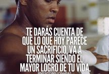Frases Boxeo