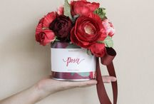 """Red Perfect Gift for her / The perfect gift that will make she happy, featuring Floriology; meaning of flowers since Victoria times. & Other relates Gifts favored by """"Her"""""""