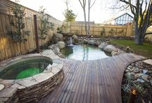 Natural Pools / For our backyard- European style