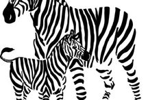 Zebra Wall Decals: Best Zebra Print Vinyl Sticker Graphic / Decorating the room with zebra decals would be a natural and fun loving experience for children as well as adults. Zebras are very social animal with their unique stripe makes very interesting appearance to us. There are nice stickers and decals with beautiful boarder as well as wall fit designs of zebra theme would really make our room walls decent look.