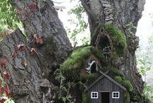 lesní domečky