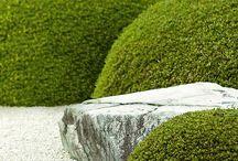 Zenové Záhrady