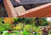 Bahçe işleri saksı benzeri şeyler