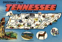 Tennessee Travels / by Gail Ingrum