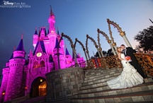 My one day happily ever after