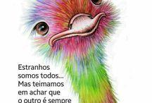 avestrus