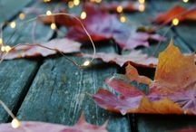 autumn pictures