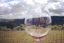 Raptor Ridge Winery / Visit our Winery in Newberg, Oregon