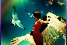 Фламенко / Фламенко - танец особенный. Он яростный и нежный, веселый и грустный, динамичный и вкрадчивый, народный и современный. О любви или грусти, земле или мечтах - он всегда находит отклик в сердцах зрителей.