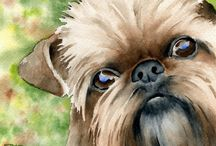 Brussels Griffon/Trixie/Gizmo / by Vicki Crouch