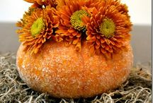 new ideas for pumpkins / by Shelly Callahan