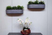 Wandkübel - Pflanzkübel für die Wand