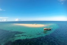 Gone to the Beach / Ibo Island Lodge offers daily boat transfers to a pristine sandbank in the middle of the ocean - snorkelling, swimming and sun-tanning :)