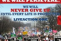 Pro-Life Generation