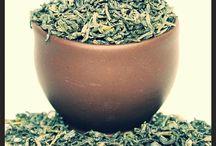 Tea of the Day / The Teas of the Day at Capital Teas!
