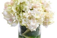 Floral arrangements ideas / by Emmanuelle Marchant