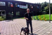 Nieuws over duurzame warmte. / http://solarmagazine.nl/nieuws-zonne-energie/i3964/update-nederlands-duitse-energiemeeting-over-zonnewarmte-op-23-september?utm_source=Solar+Magazine+Nieuwsbrief&utm_campaign=d3f164a5be-Zonneflits_30_2015&utm_medium=email&utm_term=0_d7bdde83fb-d3f164a5be-22844705  #zonnecollectoren #zonnepanelen #zonneenergie #duurzaam