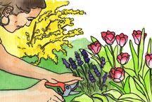 Das Gartenjahr / www.frankskleinergarten.de ist ein Gartenportal mit journalistischem Anspruch, tollem Service und ansprechender Optik. Das Portal möchte zum einen ein guter Ratgeber sein, zum anderen aber auch unterhalten und Balsam für die gestresste Seele bieten.