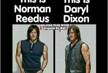Daryl / The walking dead