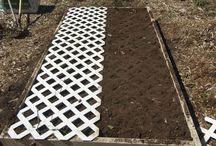 Garden Ideas / by Roxanne Birchfield