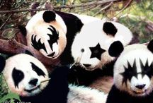 Pandamonium / by Poef Design