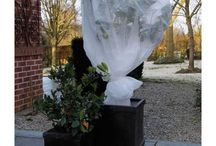 Garden Frost Protection Cover
