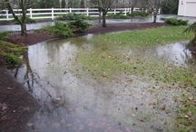 Yard Flooding Solutions / Reliable Basement Services