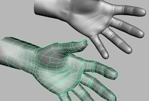 Hands, Anatomy and Topology