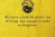 Hogwarts Hufflepuff House