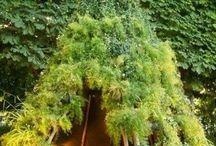 idée jardin bucolique