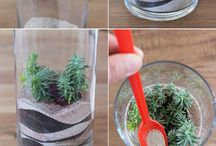 φυτα σε γυαλα