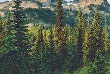 lugares, natureza