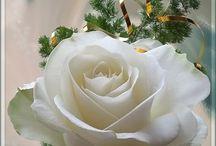 display / beloved flowers...
