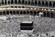SAUDI ARABIA | Stalwart
