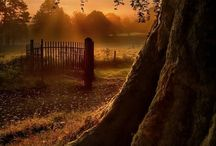 BEAUTIFUL SUNSET &NICE PLACE