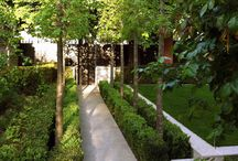 Top Contemporary Garden Ideas / Love modern gardens then this is the ultimate board to find contemporary ideas for your outdoor space.