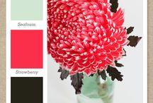 Color / Цветовые сочетания