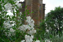Kent & Sussex: The Garden of Engeland. / Tuinen in het prachtige Kent!