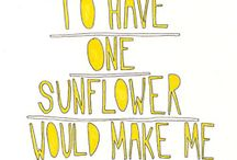 sunflower everywhere / important part of my life